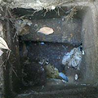 古い排水枡